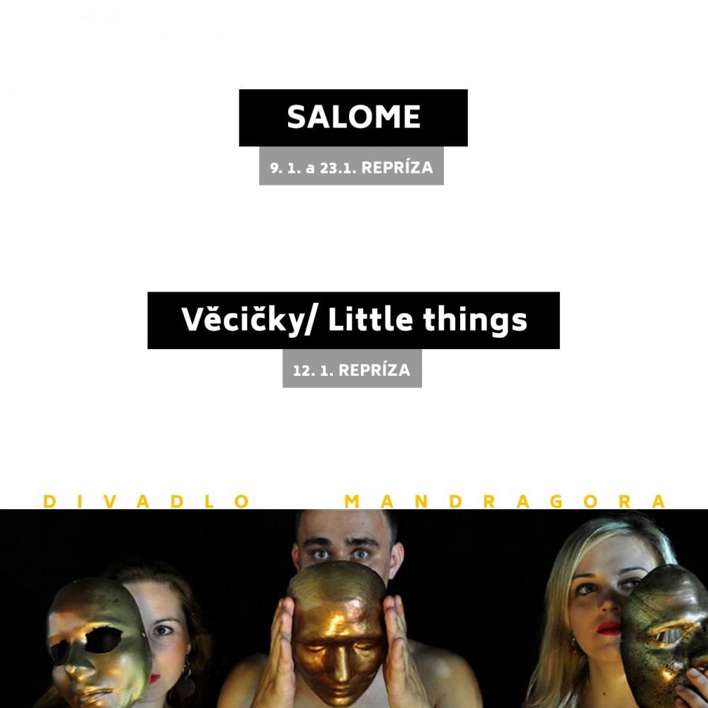 vecicky_salome_reprizy_leden_l